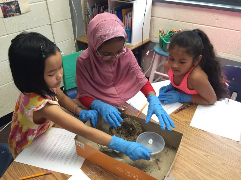 """Second graders at Stratford Landing Elementary School examine """"Animal Things"""" during their RESET session"""